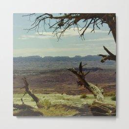 Desert Landscape image Metal Print