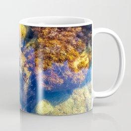 The Tide Pool Coffee Mug
