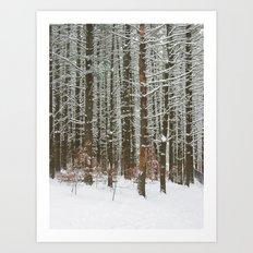 Snowy Stand Art Print