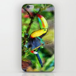 Toucan watercolor iPhone Skin