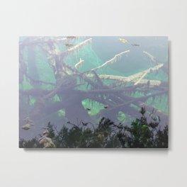 Kitch-iti-kipi, Mirror of Heaven Metal Print