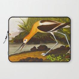 American Avocet Vintage Bird Illustration Laptop Sleeve