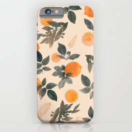 CITRUS & ORANGES III iPhone Case