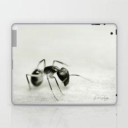 Drunken Ant Laptop & iPad Skin