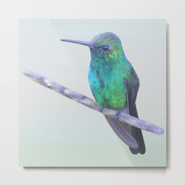Cuban Emerald Hummingbird Metal Print