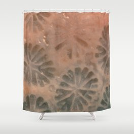 Agatized Coral Filtered Shower Curtain