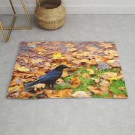 Corbeau d'automne. Rug