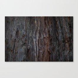Kings Canyon Tree no.2 Canvas Print