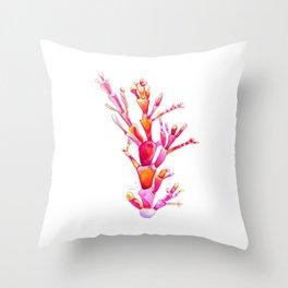 Corallina Seaweed Throw Pillow
