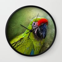 parrot Wall Clocks featuring parrot by lucyliu