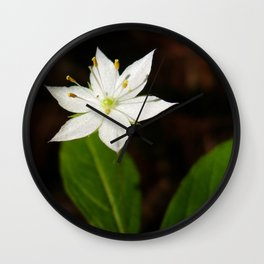 Starflower Wall Clock
