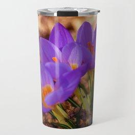 Concept nature : Crocus etruscus in silva Travel Mug