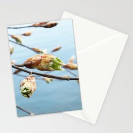 Spring At The Lake Stationery Cards