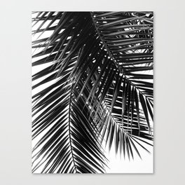 Tropical Vibes | Black and White Canvas Print