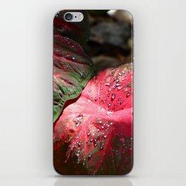 Tropical Rain - Botanical Art by Sharon Cummings iPhone Skin