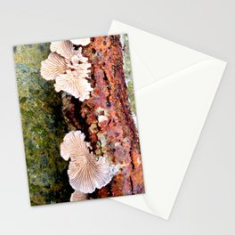 Tree Fungus Stationery Cards