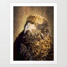 Fine Feathered Friend Art Print