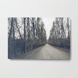 Countryside wander Metal Print