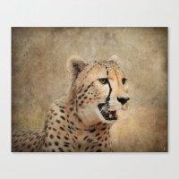 cheetah Canvas Prints featuring Cheetah by Jai Johnson