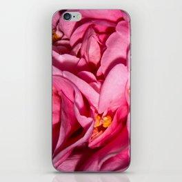 Camellia Close iPhone Skin