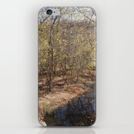 Trickle of water iPhone Skin