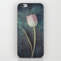 tulip iPhone & iPod Skins featuring Tulip by Maria Heyens