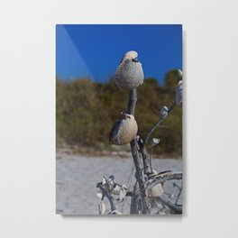 Dangling from Driftwood- vertical Metal Print