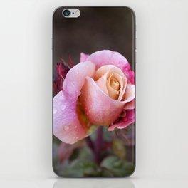PDX Rose Garden iPhone Skin