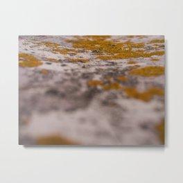 Mossy Decay Metal Print