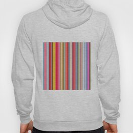 Colorful lines print Hoody