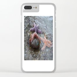 Sea Stars (starfish) chilling by Aloha Kea Photography Clear iPhone Case