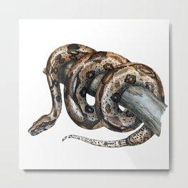 Lurking snake Metal Print