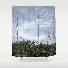 sunny day tropical Shower Curtain