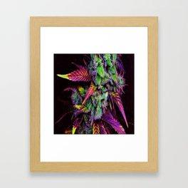 colorf Framed Art Print