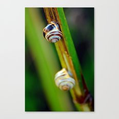 Climbing Up the Stalk Canvas Print