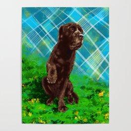 Nene the cutest dog Poster