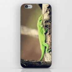 Mischief Maker iPhone & iPod Skin