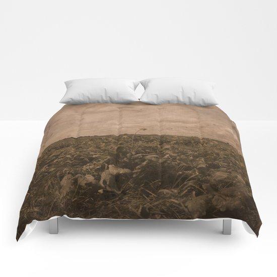 Holland ride Comforters