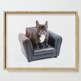 French bulldog portrait Serving Tray