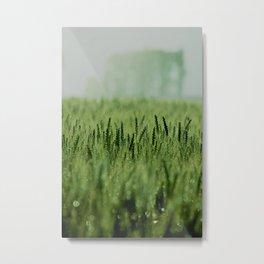 Crop Metal Print