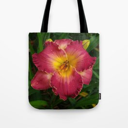 Sis Boom Bah daylily! A world of rose and gold Tote Bag