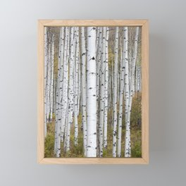 Fall in Colorado Framed Mini Art Print