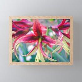 Flowers of Pink Framed Mini Art Print