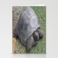 tortoise Stationery Cards featuring tortoise by shannon's art space