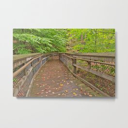 Catoctin Boardwalk Trail Metal Print