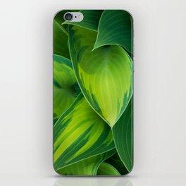 Hosta Camouflage iPhone Skin