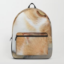 Orange Black and White Tricolor Cat Backpack