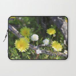 Yellow and White Desert Wildflowers of California by Reay of Light Laptop Sleeve