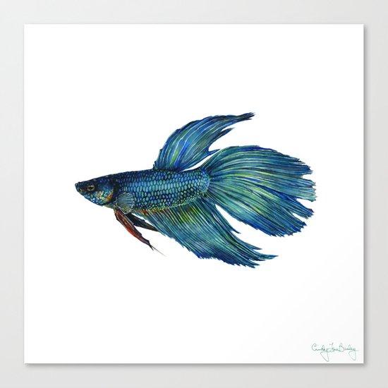 Mortimer the Betta Fish Canvas Print