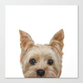 Yorkshire 2 Dog illustration original painting print Canvas Print